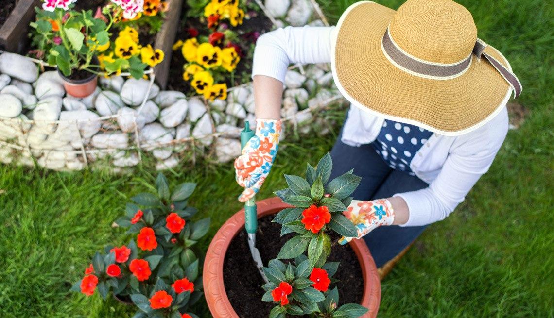 jardineria accesibilidad
